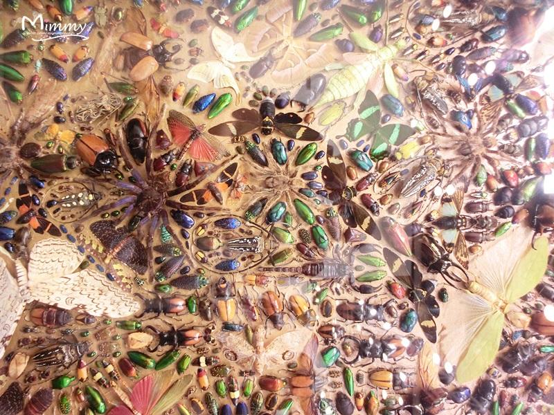 巴塞尔/Damien Hirst的画,远看像新疆切糕,近看才发现原来都是用昆虫...