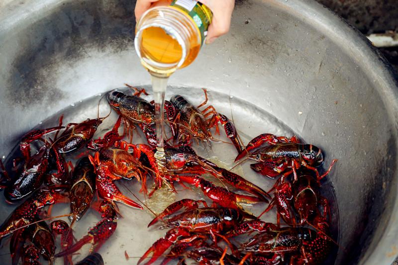 他家是放蜂蜜清理小龙虾的肠胃的.
