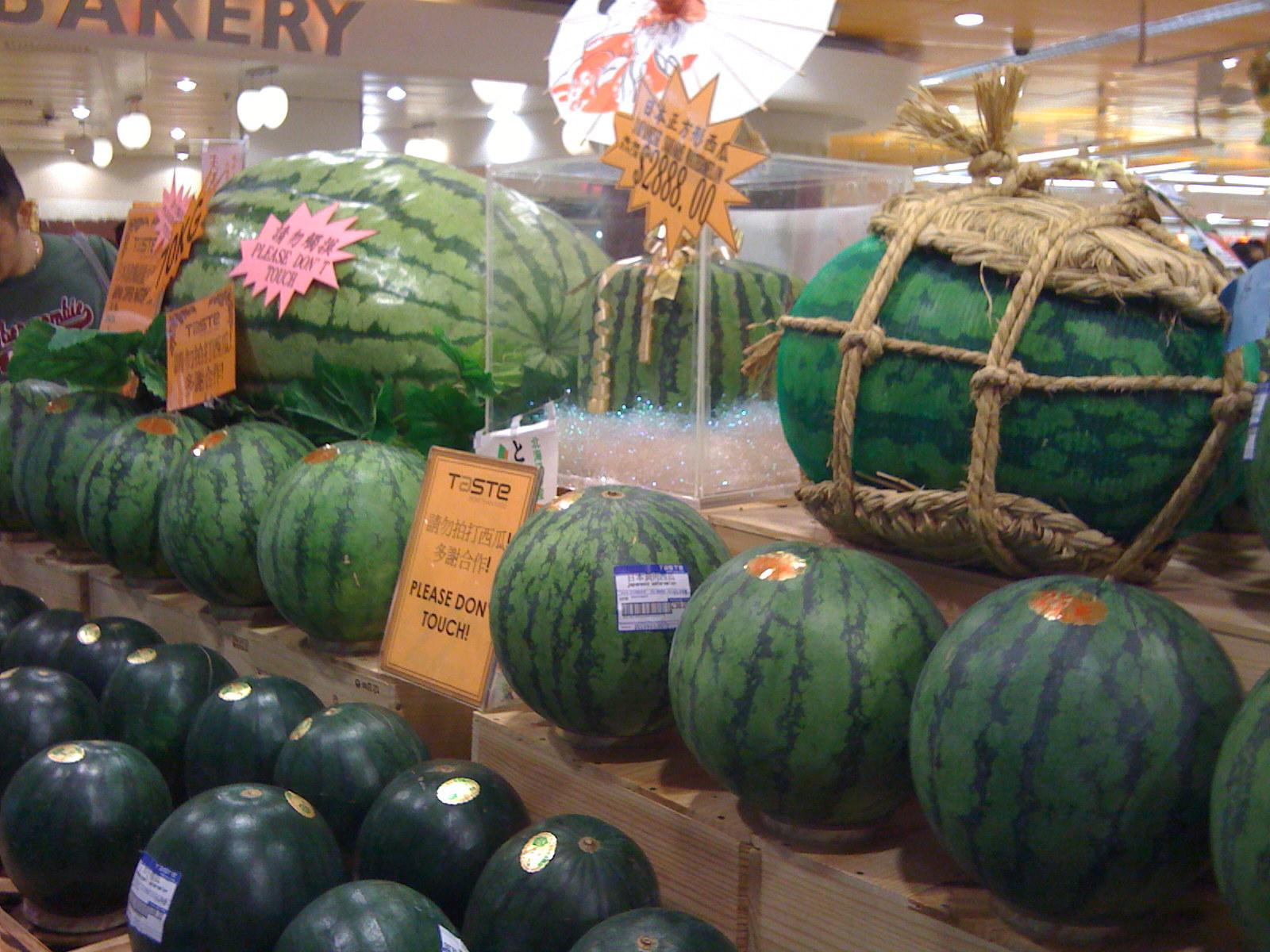 超级大西瓜