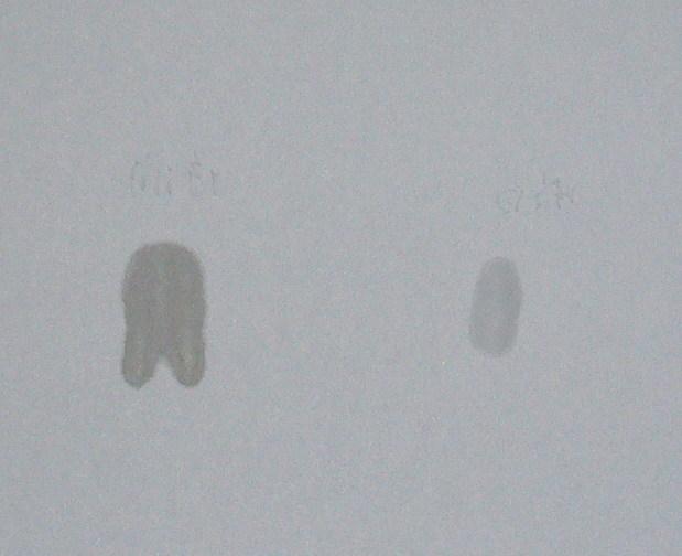 纸的反面(左边深色的是特润,右边淡色的是嫩白):特润已经化开并润湿了