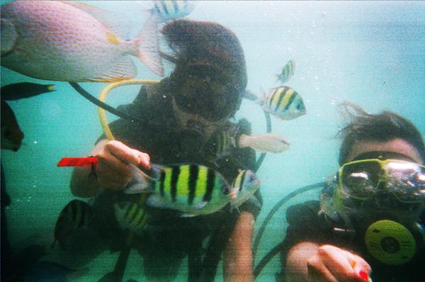 珊瑚岛的水下王国77泰自游